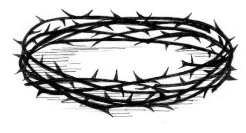 51022-Crown_of_Thorns.jpg.540x
